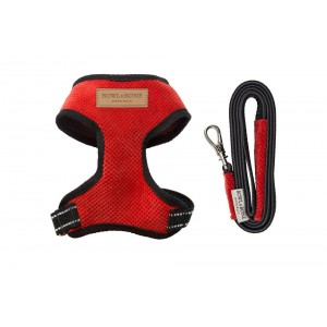 Dog harness CANDY red