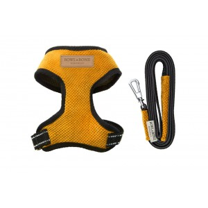 Dog harness CANDY yellow