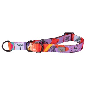 Half-clamp dog collar FUNKY...