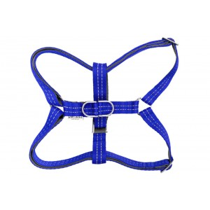Dog harness ACTIVE blue