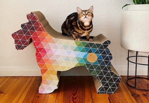 Tekturowy drapak dla kota - dlaczego warto?